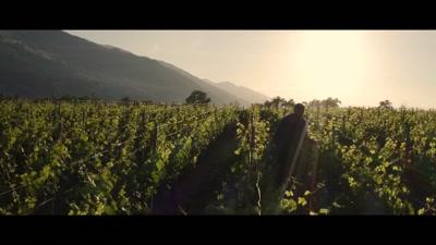 Vidéo MEDLEY 2 - Clémentine Domptail
