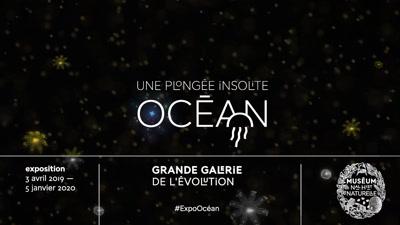 Vidéo BA expo OCEAN Museum d'Histoire Naturelle
