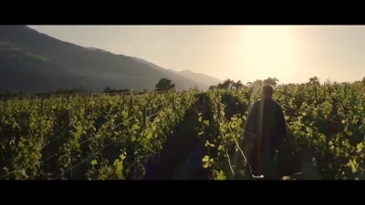 Vidéo Medley 2 Film Promotionnel